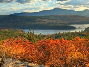 New York State of Mind: A Solo Gay Getaway